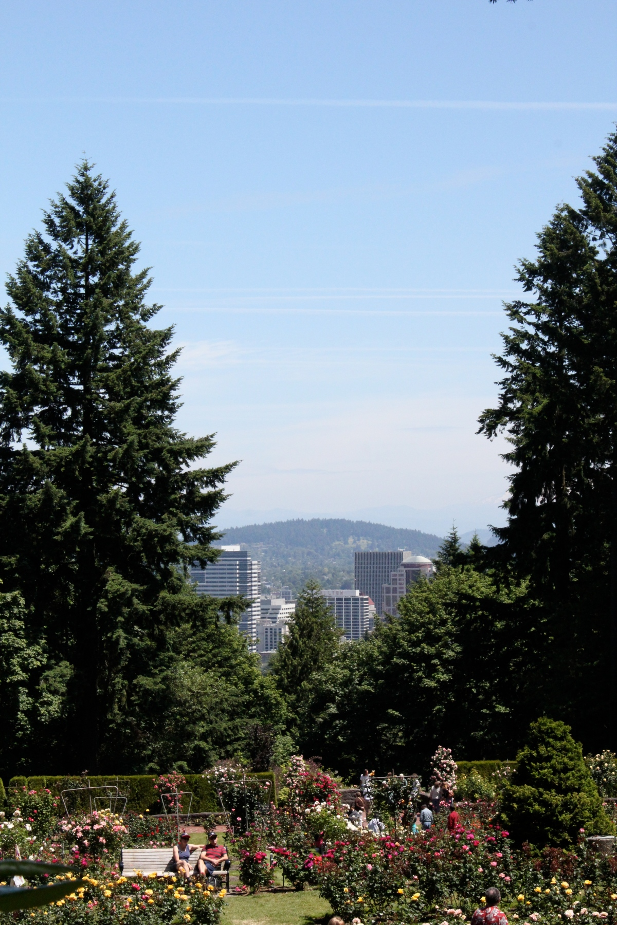 View of downtown Portland from Washington Park