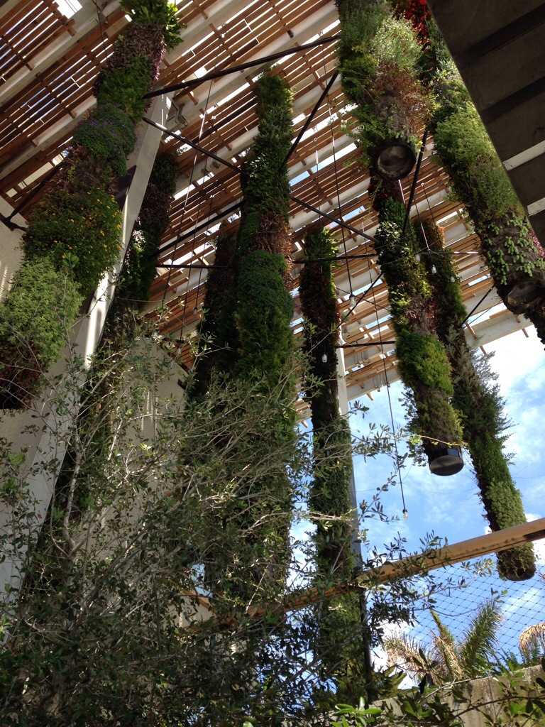 Hanging gardens of the Perez Art Museum (PAMM)