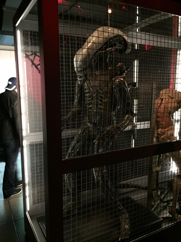 One of the pieces of the Sci-Fi/Horror memorabilia