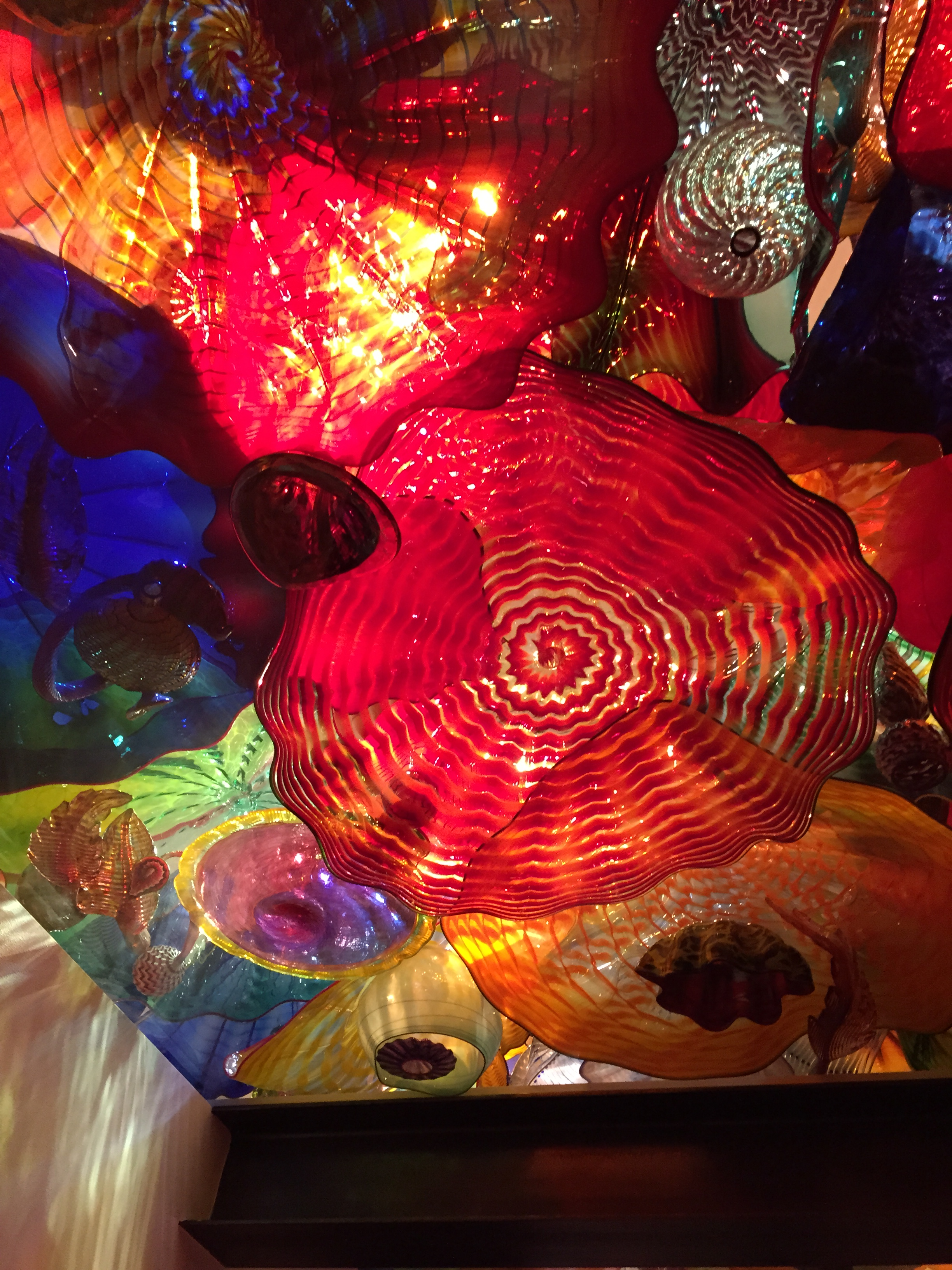 Ceiling of glass sculptures