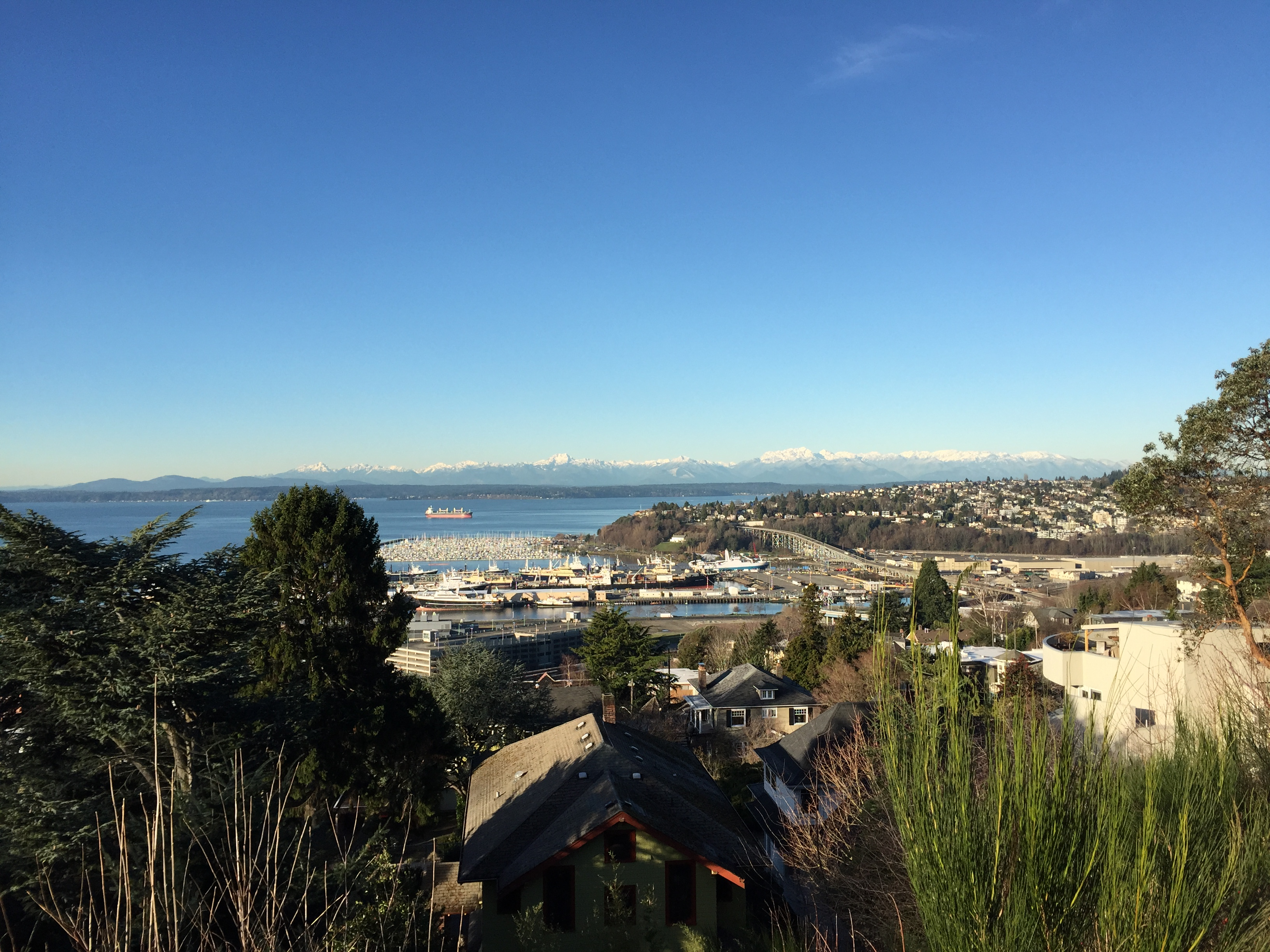 View of Puget Sound and the Olympics from Marshall Park
