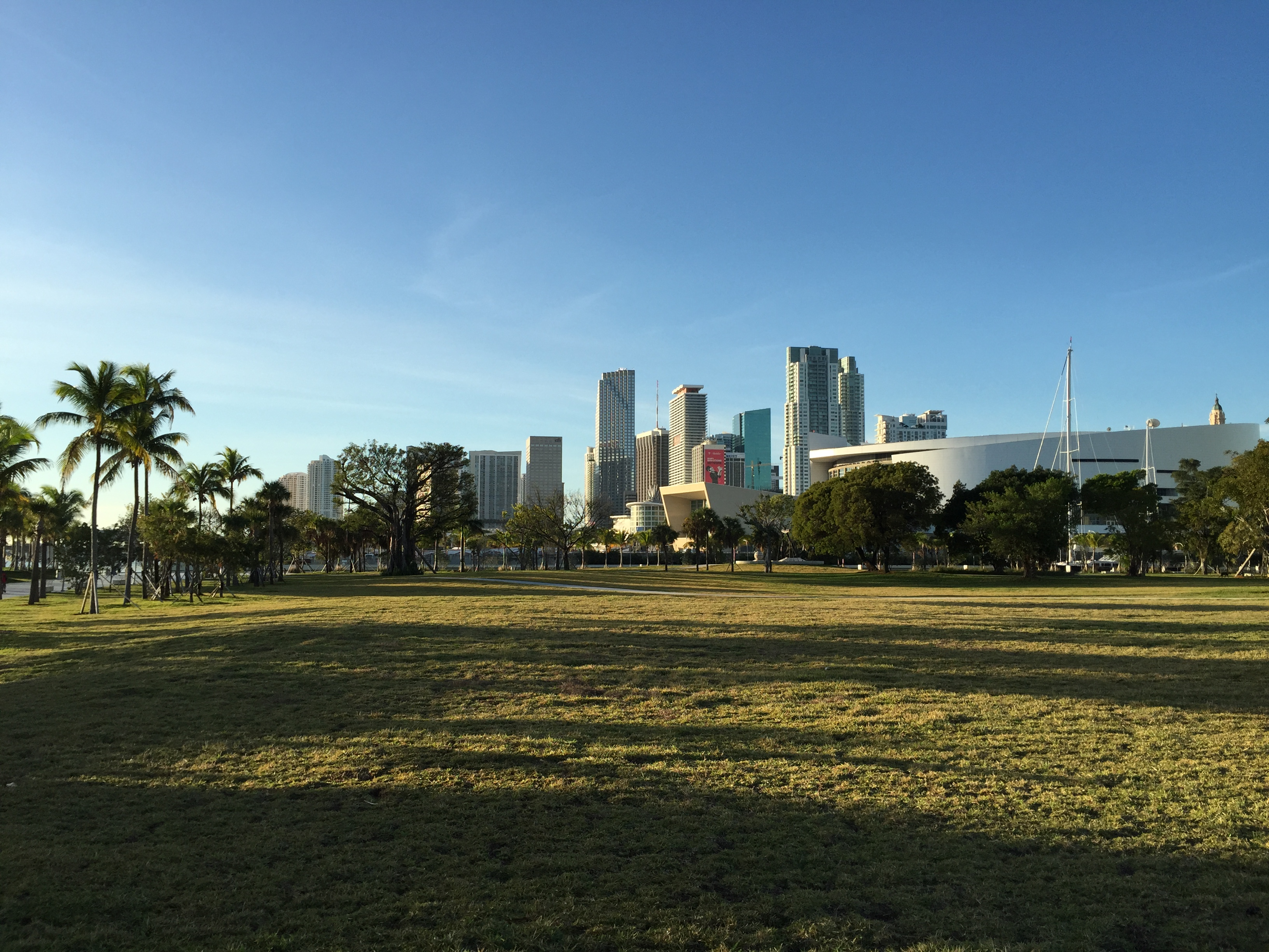 Great shots of the Miami skyline from the park